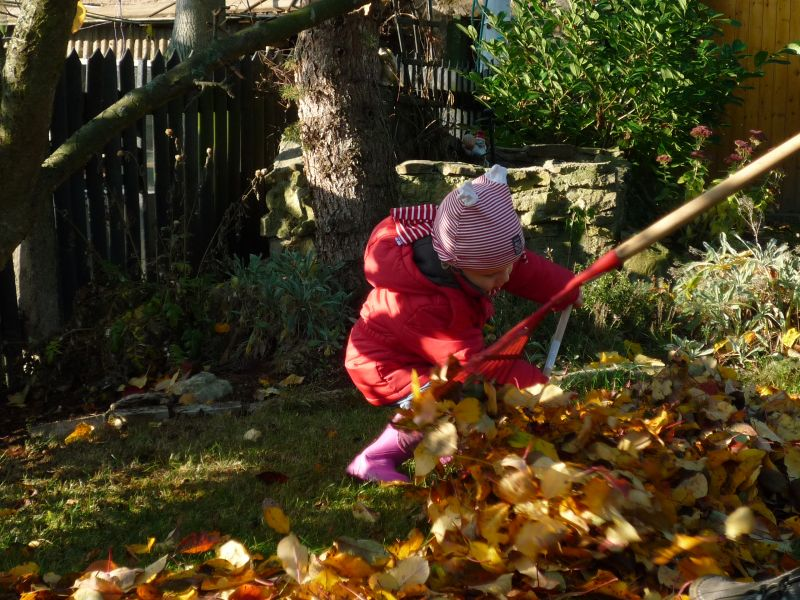 November 2011 peskovablog for Garten arbeiten